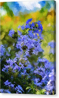 Blue Flower Of October Canvas Print by SM Shahrokni