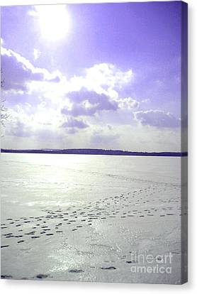 Blue Frozen Lake Canvas Print by Silvie Kendall