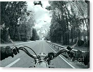 Blue Harley Canvas Print by Micah May