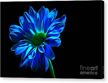 Blue Harmony Canvas Print by Krissy Katsimbras