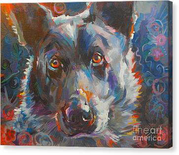 Cattle Dog Canvas Print - Blue Heeler by Kimberly Santini