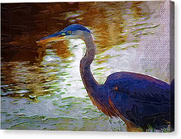 Canvas Print featuring the photograph Blue Heron 2 by Donna Bentley