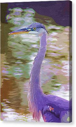 Canvas Print featuring the photograph Blue Heron by Donna Bentley