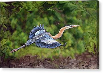 Canvas Print featuring the photograph Blue Heron Flight by Shari Jardina