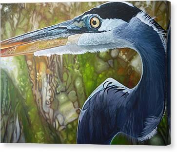 Canvas Print - Blue Heron by Jon Ferrentino