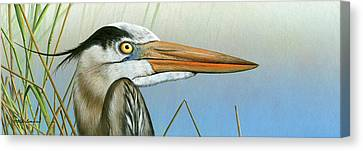 Blue Heron  Canvas Print by Mike Brown