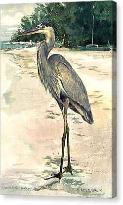 Shawn Canvas Print - Blue Heron On Shell Beach by Shawn McLoughlin