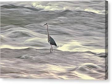 Blue Heron On The Grand River Canvas Print