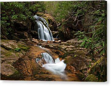 Blue Hole In Spring 2017 II Canvas Print by Jeff Severson