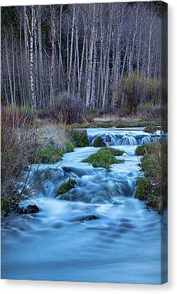 Blue Hour Streaming Canvas Print by James BO Insogna