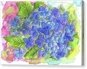 Canvas Print featuring the painting Blue Hydrangea by Cathie Richardson