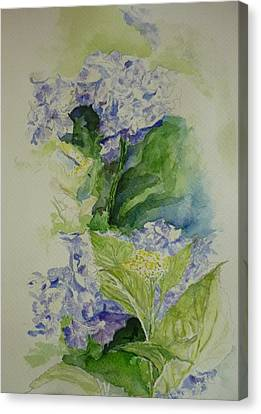 Blue Hydrangea Canvas Print by Lizzy Forrester