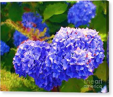 Blue Hydrangea Canvas Print by Methune Hively