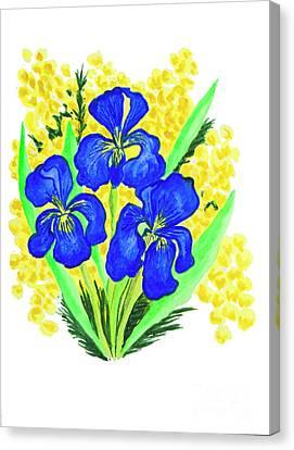 Blue Irises And Mimosa Canvas Print