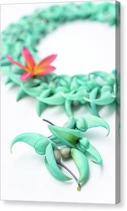 Blue Jade Lei Canvas Print