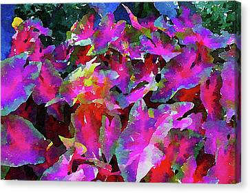 Blue Jazz In The Pink Leaves Canvas Print
