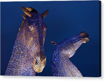 Blue Kelpies Canvas Print by Stephen Taylor