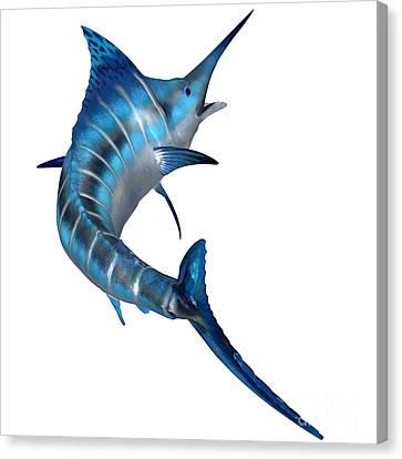 Blue Marlin Predator Canvas Print by Corey Ford