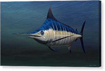 Blue Marlin Canvas Print by Walter Colvin
