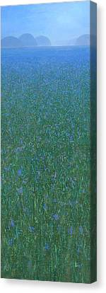 Misty Canvas Print - Blue Meadow 2 by Steve Mitchell