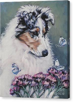 Blue Merle Collie Pup Canvas Print by Lee Ann Shepard