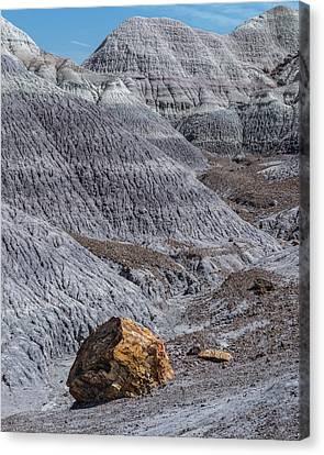 Petrified Forest Arizona Canvas Print - Blue Mesa by Joseph Smith