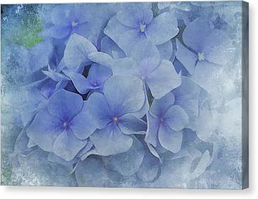 Canvas Print featuring the photograph Blue Moments by Elaine Manley
