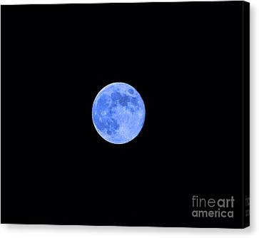 Blue Moon Canvas Print by Al Powell Photography USA