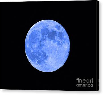 Blue Moon Close Up Canvas Print by Al Powell Photography USA