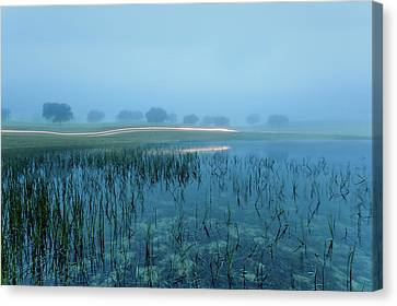 Canvas Print featuring the photograph Blue Morning Flash by Jorge Maia