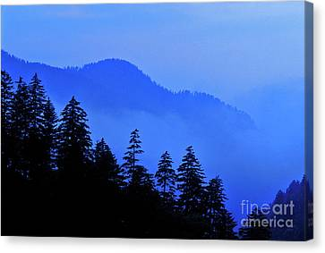 Canvas Print featuring the photograph Blue Morning - Fs000064 by Daniel Dempster