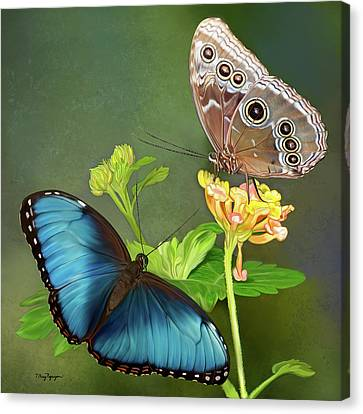 Blue Morpho  Butterflies Canvas Print by Thanh Thuy Nguyen