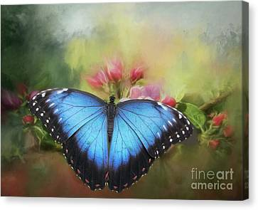 Blue Morpho On A Blossom Canvas Print by Eva Lechner
