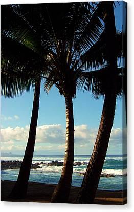 Blue Palms Canvas Print by Karen Wiles