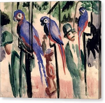 Blue Parrots Canvas Print by August Macke