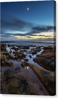 Blue Canvas Print by Peter Tellone