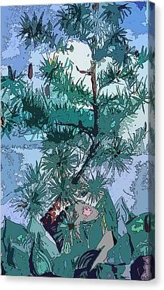 Blue Pine  Canvas Print