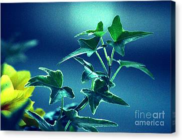 Canvas Print featuring the photograph Blue Power  by Susanne Van Hulst