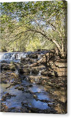 Blue Puddle Falls Canvas Print by Ricky Dean