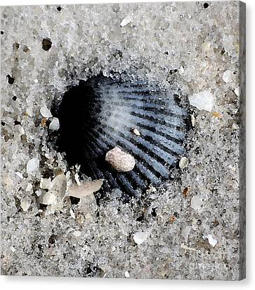 Blue Purple Ribbed Sea Shell Macro Buried In Fine Wet Sand Square Format Watercolor Digital Art Canvas Print by Shawn O'Brien
