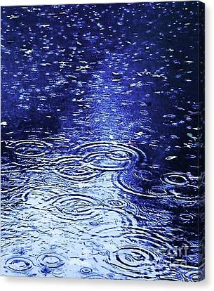 Blue Raindrops Canvas Print by Maria Scarfone