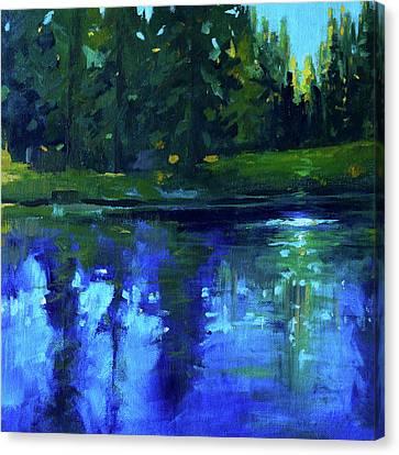 Blue Reflection Canvas Print by Nancy Merkle