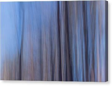 Blue Relief Canvas Print