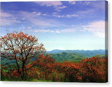 Canvas Print featuring the photograph Blue Ridge Blessing by Jessica Brawley