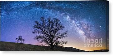 Blue Ridge Milkyway Canvas Print by Robert Loe