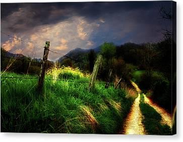 Blue Ridge Mountain Country Road Canvas Print by Gray  Artus