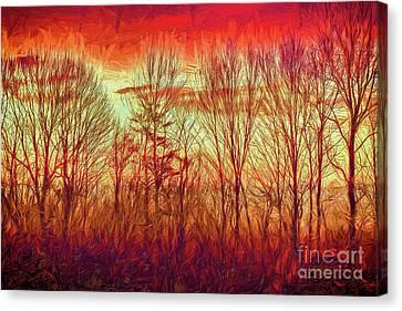Blue Ridge Mountain Winter Trees At Sunrise Ap Canvas Print