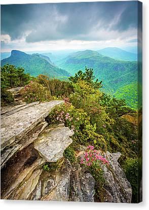 Blue Ridge Mountains Nc Hawksbill Spring Canvas Print by Robert Stephens