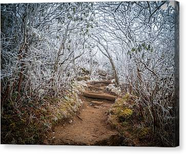 Blue Ridge Parkway Nc An Entrance To Winter Canvas Print by Robert Stephens