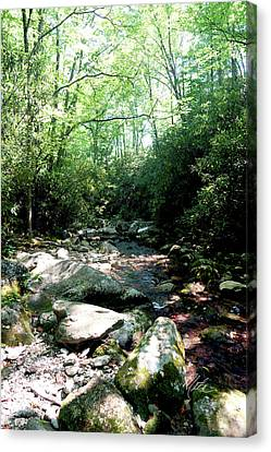 Canvas Print featuring the photograph Blue Ridge Parkway Stream by Meta Gatschenberger